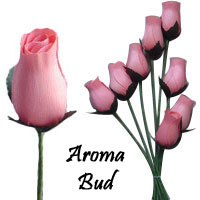 Pink Scented Aroma Buds