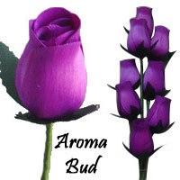 Purple Scented Aroma Buds