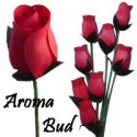 Red Scented Aroma Buds